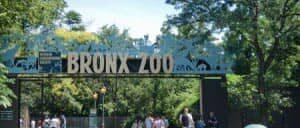 ニューヨーク ブロンクス動物園