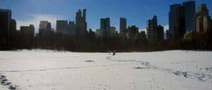 ニューヨーク 冬のセントラルパーク