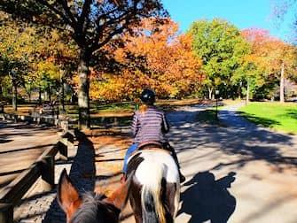 セントラルパーク 乗馬 - ブライドルパス