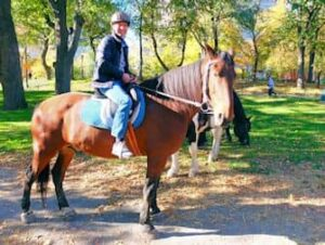 セントラルパーク 乗馬